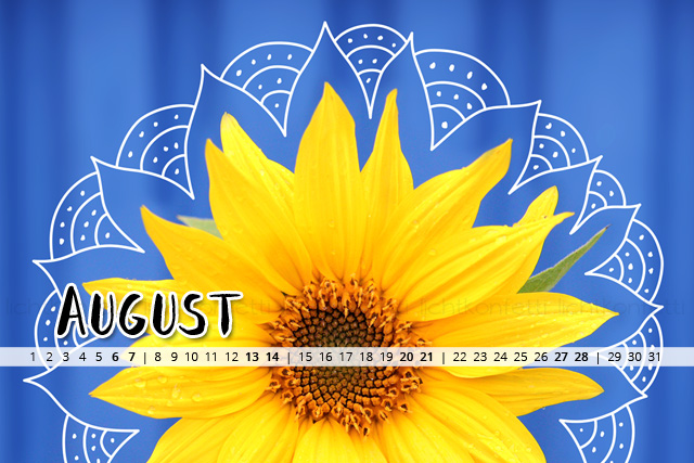 free Wallpaper August 2016 - Sonnenblume Mandala Sommer