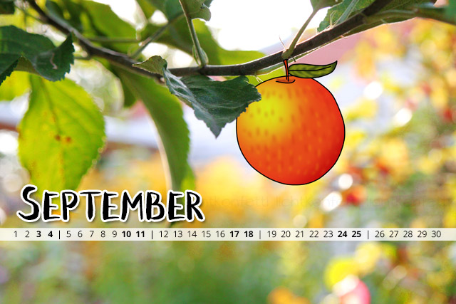 free Wallpaper September 2016 - Apfel Herbst Autumn