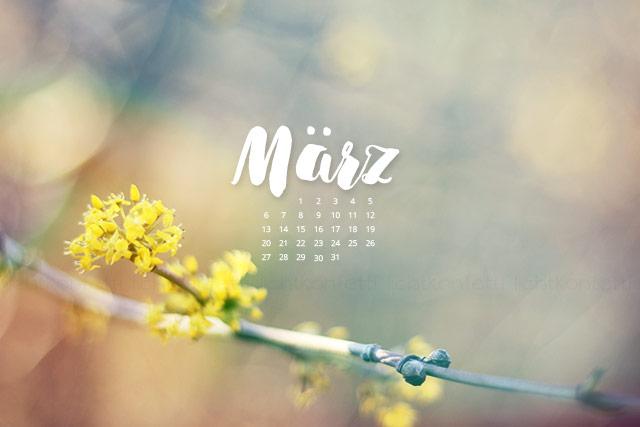 free Wallpaper März 2017 - Frühling Blüte