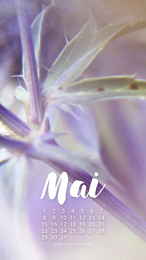 free Wallpaper Mai 2017 iPhone - Frühling Bpkeh