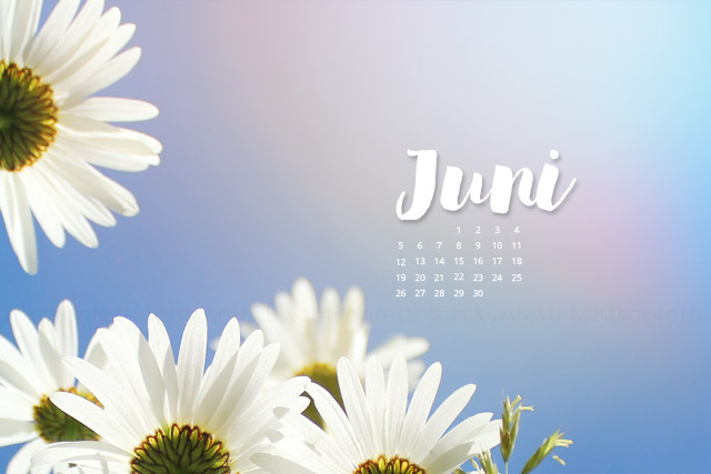 free Wallpaper Juni 2017 - Sommer Blumen