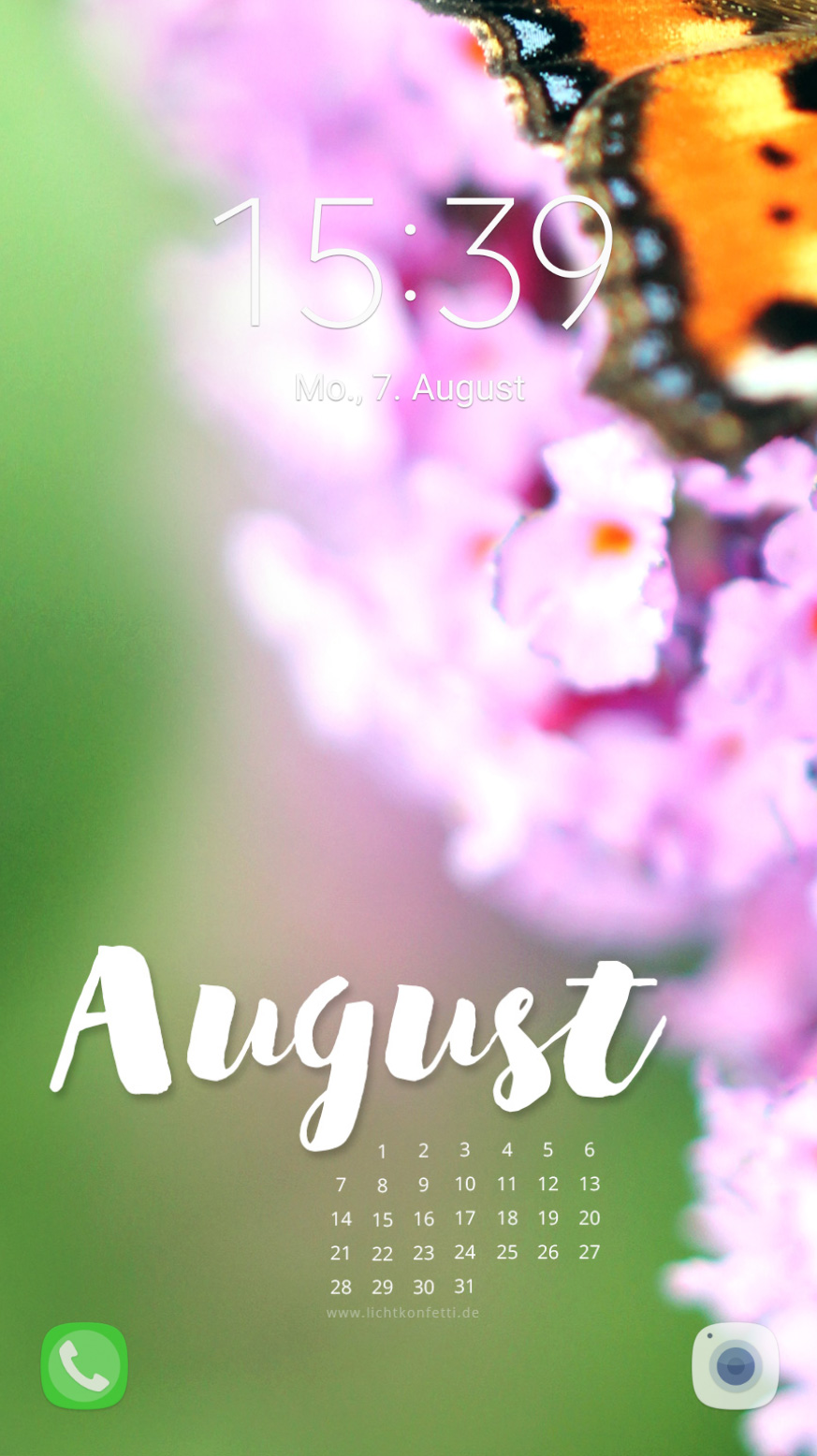 free Wallpaper August 2017 iPhone - Sommer Blumen