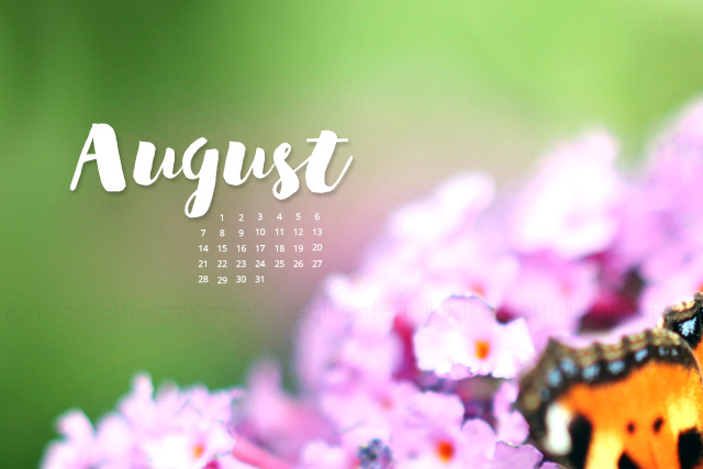 free Wallpaper August 2017 - Sommer Blumen