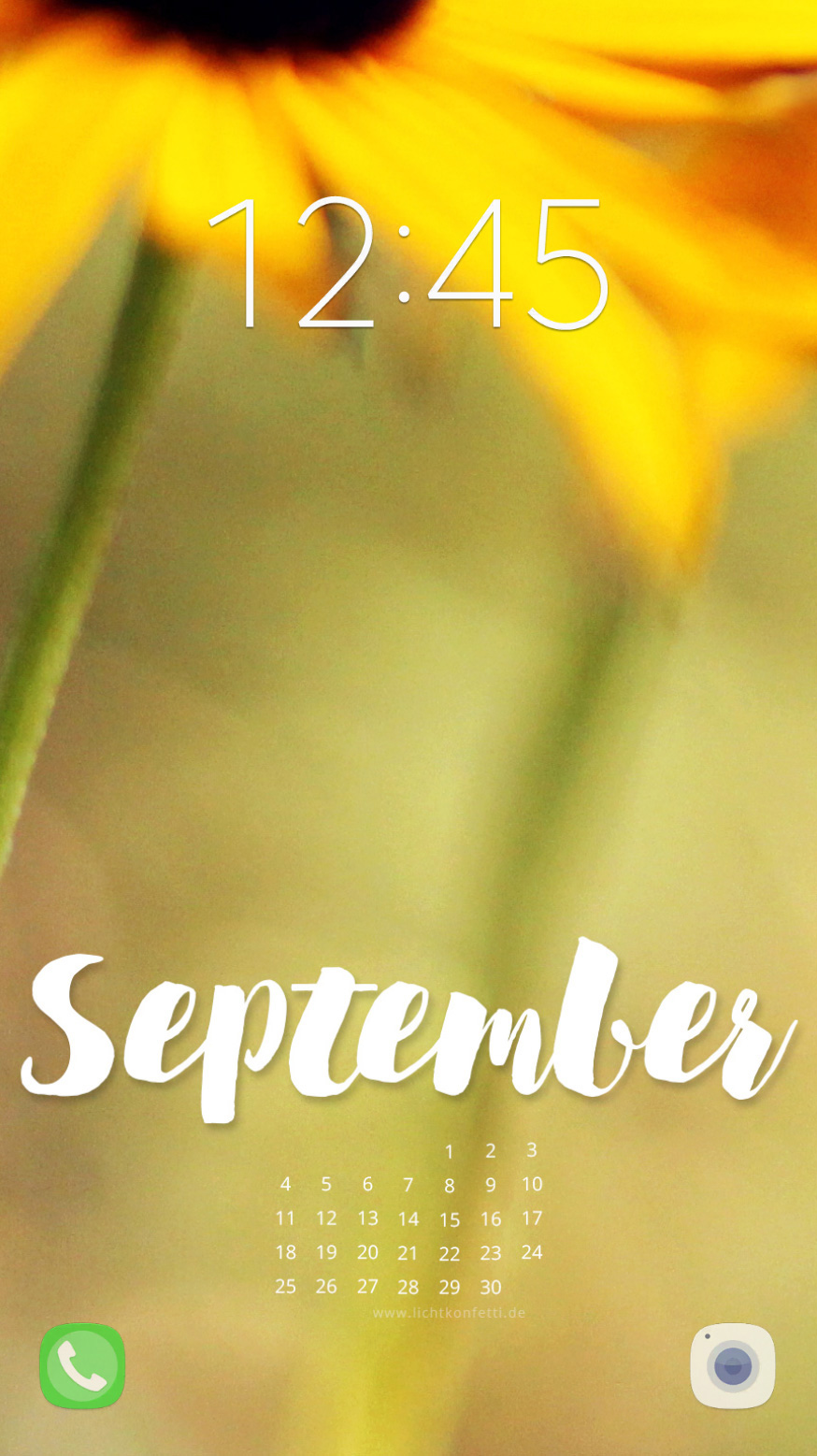 free Wallpaper September 2017 iPhone - Sommer Herbst Blumen