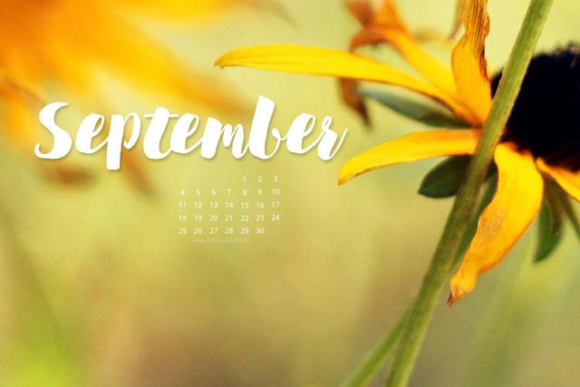 free Wallpaper Sptember 2017 - Sommer Herbst Blumen