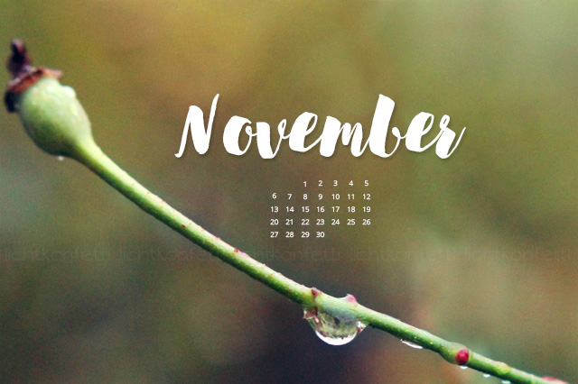 free Wallpaper November 2017 - Herbst Regen
