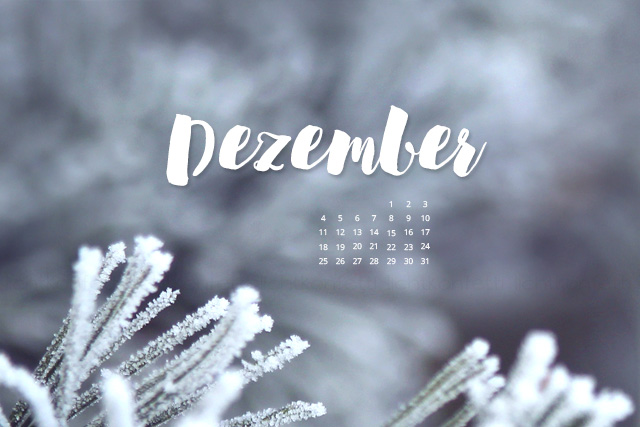 free Wallpaper Dezember 2017 - Winter Frost