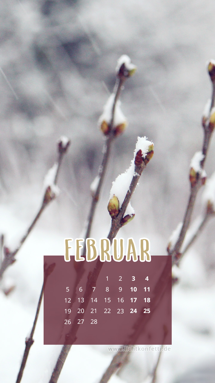 free Wallpaper Februar 2018 iPhone - Winter Schnee