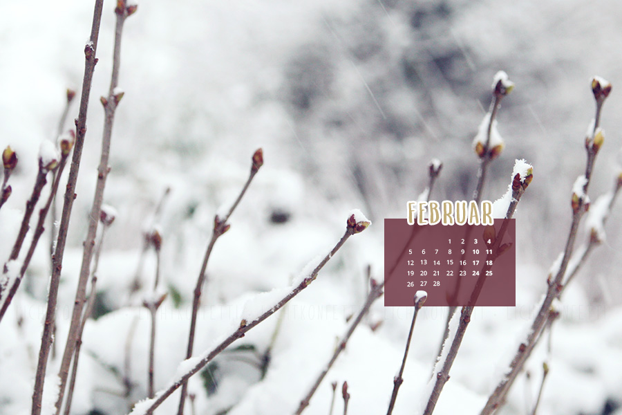 free Wallpaper Februar 2018 - Winter Schnee