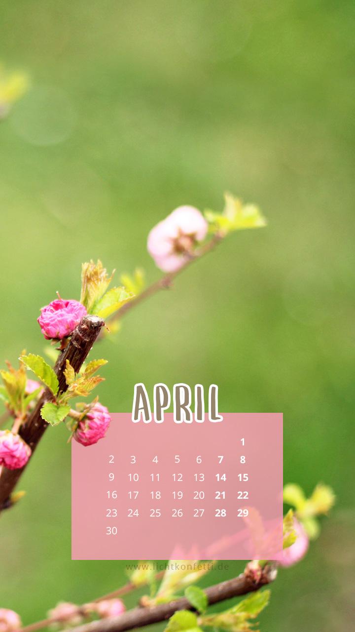 free Wallpaper April 2018 iPhone - Frühling Knospe