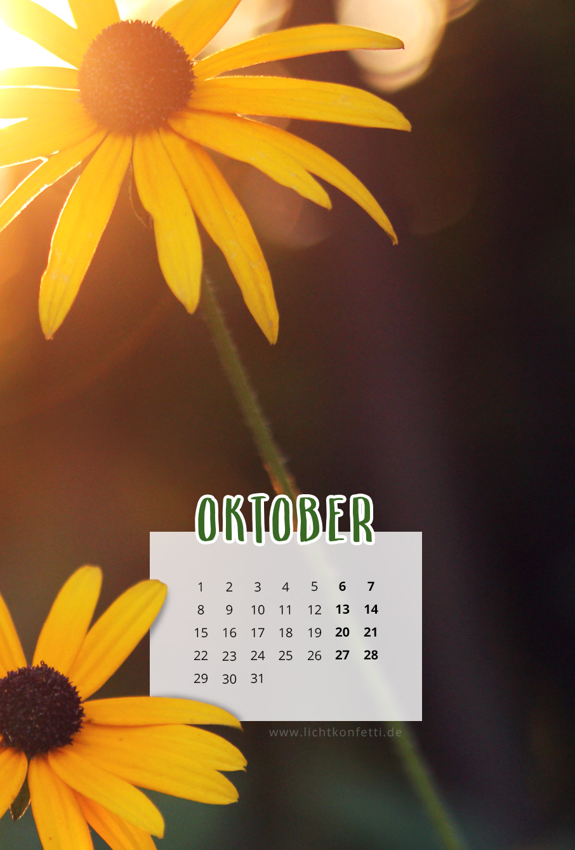 free Wallpaper Oktober 2018 iPhone - Herbst Goldene Stunde