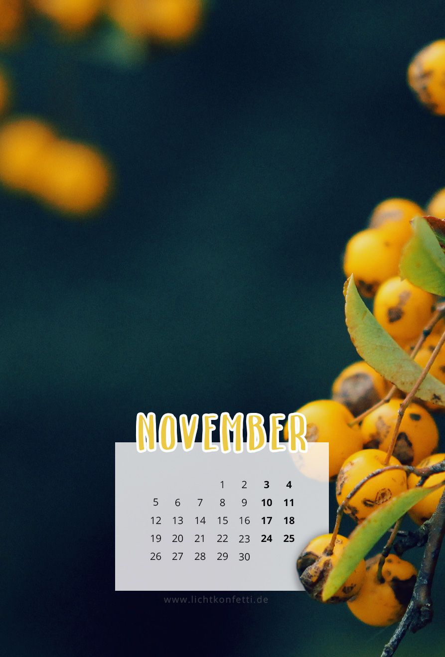 free Wallpaper November 2018 iPhone - Gelbe Beeren im Herbst