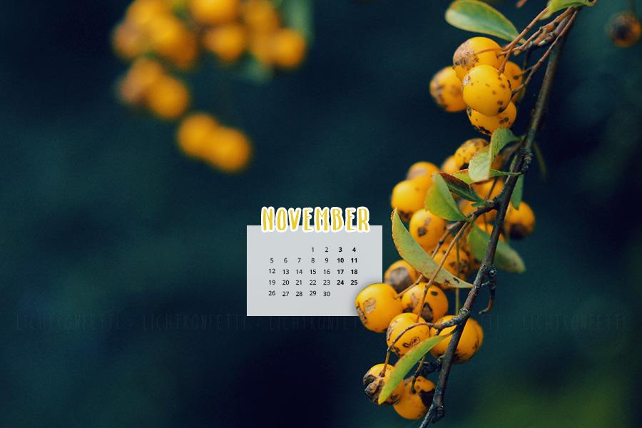 free Wallpaper November 2018 - Gelbe Beeren im Herbst