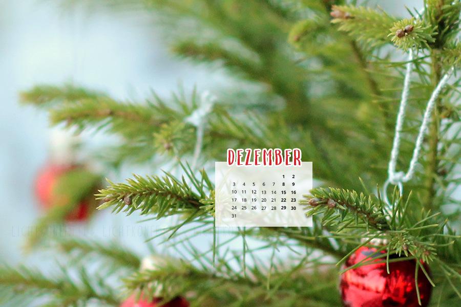 free Wallpaper Dezember 2018 - Tannenzweig Weihnachten