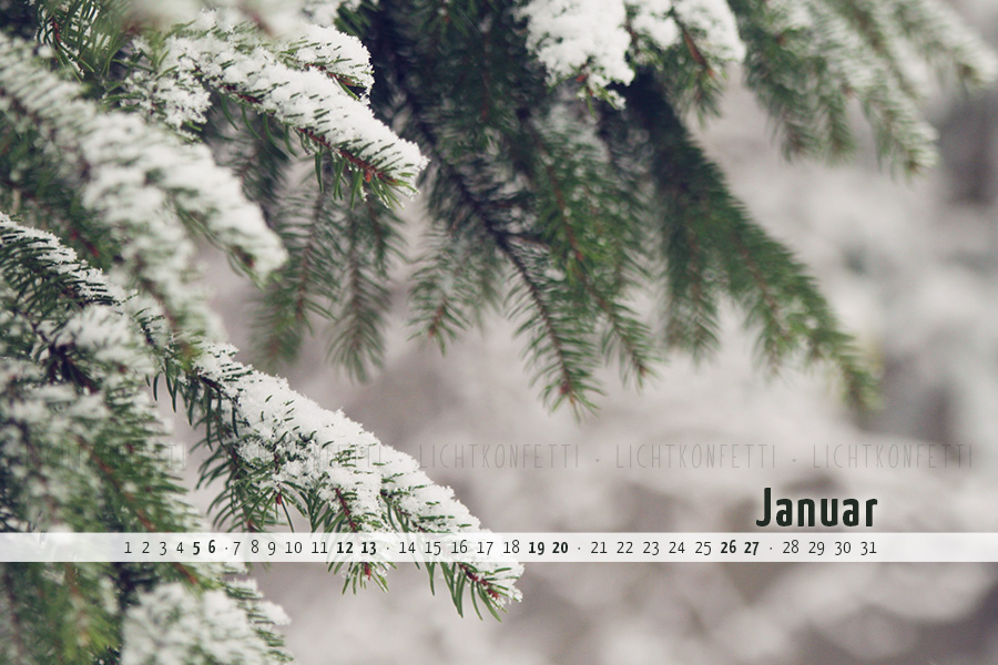 free Wallpaper Januar 2019 - Tannenzweig Schnee Winter